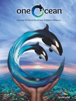 One Ocean at SeaWorld - Killer Whale Show