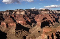 A motorist survived a 200-foot drop into the Grand Canyon