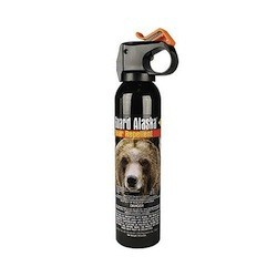 Bear spray was accidently set off in the Grand Teton visitor center