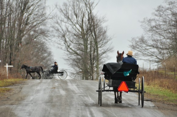 amish buggy traffic